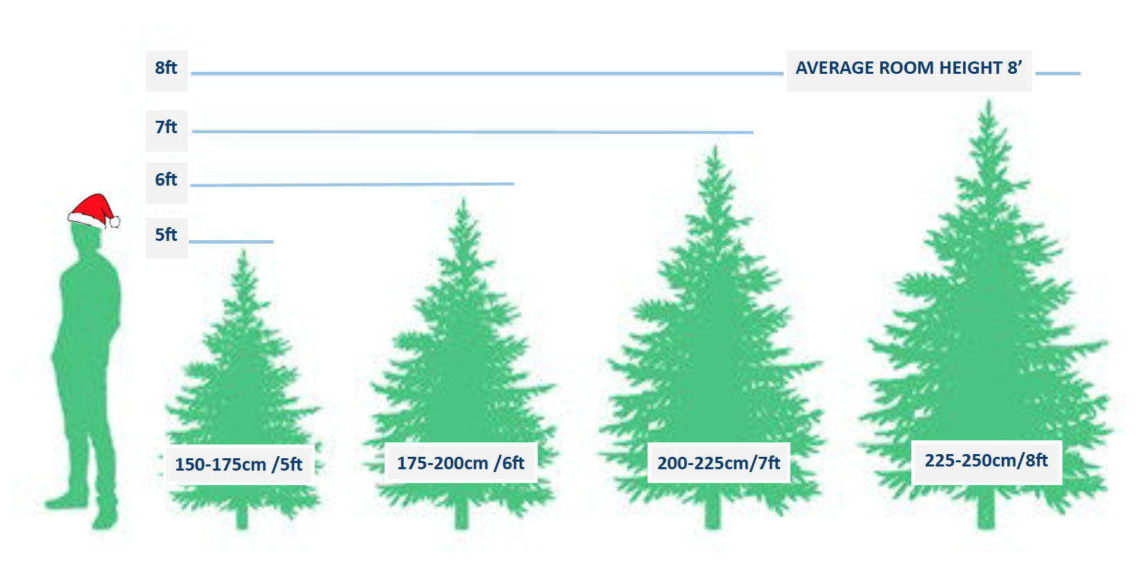 Tree Height Chart